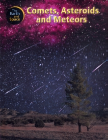 Image for Comets, asteroids and meteors