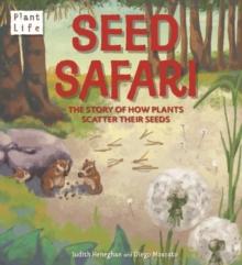 Image for Plant Life: Seed Safari