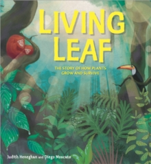 Image for Living leaf