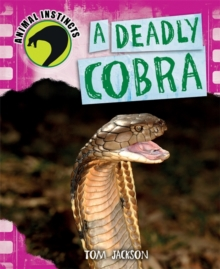 Image for A deadly cobra