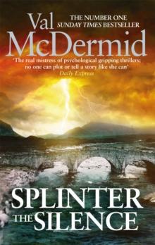 Image for Splinter the silence