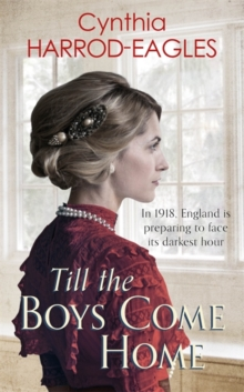 Image for Till the boys come home  : war at home, 1918
