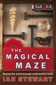 Image for The magical maze  : seeing the world through mathematical eyes