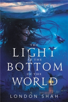 Image for The light at the bottom of the world