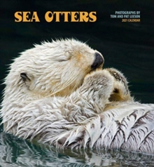 Image for Sea Otters 2021 Wall Calendar