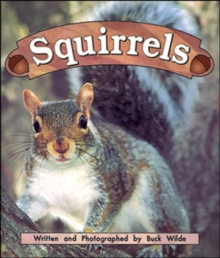 Image for Squirrels