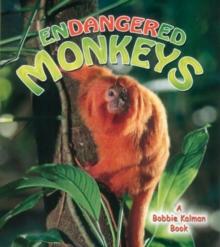 Image for Endangered Monkeys