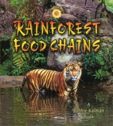Image for Rainforest Food Chains