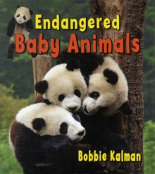 Image for Endangered Baby Animals