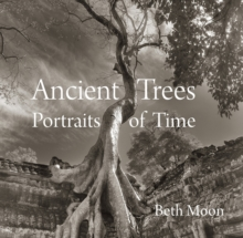 Image for Ancient Trees : Portraits of Time