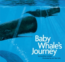 Image for Baby whale's journey