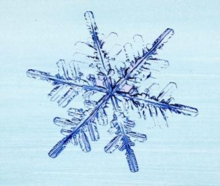 Image for The story of snow  : the science of winter's wonder