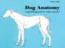 Dog anatomy  : a pictorial approach to canine structure - Goody, Peter C.