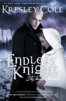Image for Endless knight