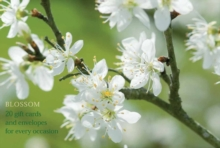 Image for Blossom : An Attractive Pack of High-Quality Flower Gift Cards and Decorative Envelopes