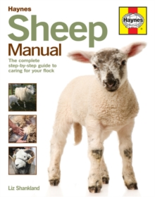 Image for Haynes sheep manual  : the step-by-step guide to caring for your first flock