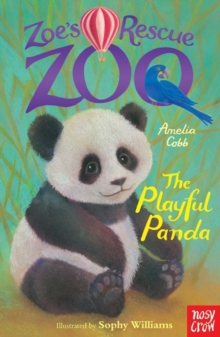 Image for The playful panda