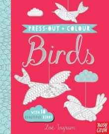 Image for Press Out and Colour: Birds
