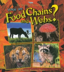 Image for What Are Food Chains and Webs?