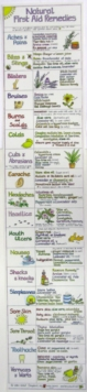Image for Natural First Aid Remedies Chart