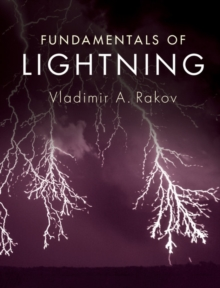 Image for Fundamentals of lightning