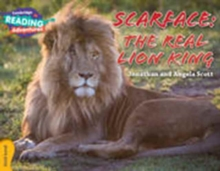 Image for Scarface - the real lion king