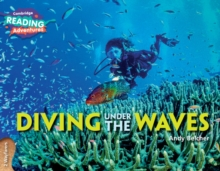 Image for Diving under the waves2