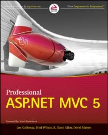 Image for Professional ASP.NET MVC 5