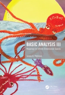 Image for Basic analysis III  : mappings on infinite dimensional spaces