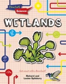 Image for Wetlands