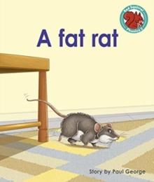 A fat rat -