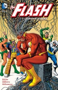 Flash By Geoff Johns Vol. 2