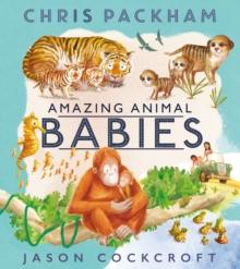 Image for Amazing animal babies