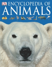 Image for Dorling Kindersley animal encyclopedia