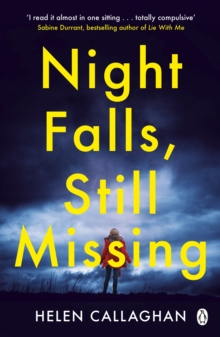 Image for Night falls, still missing