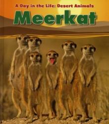 Image for Meerkat