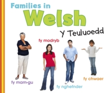 Image for Families in Welsh