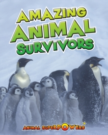 Image for Amazing animal survivors