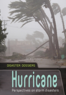Image for Hurricane  : perspectives on storm disasters