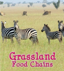 Image for Grassland food chains