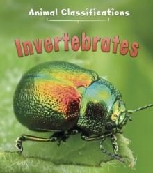 Image for Invertebrates