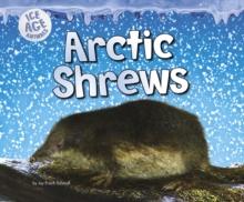 Image for Arctic shrews