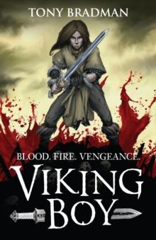 Image for Viking boy