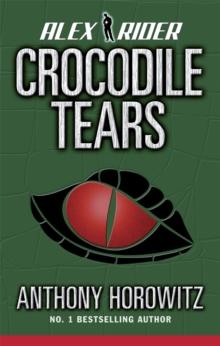 Image for Crocodile tears