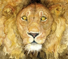 Image for The lion & the mouse  : a fable by Aesop