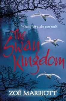 Image for The swan kingdom