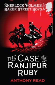 Image for The case of the Ranjipur ruby