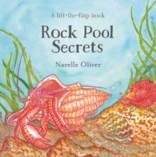 Image for Rock pool secrets