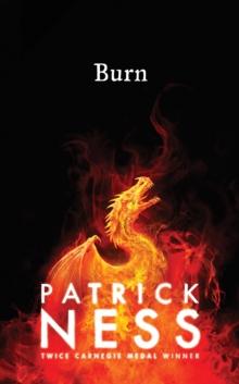 Burn - Ness, Patrick