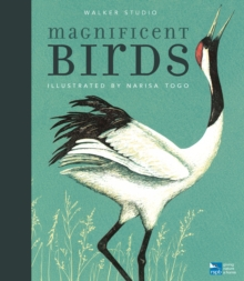Image for Magnificent birds